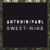 Sweet Wine - Single