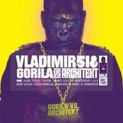Gorila Vs. Architekt