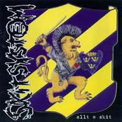 album Allt e skit by Skitsystem