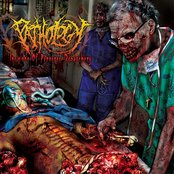 Incisions of Perverse Debauchery
