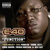 Function (Remix) [feat. Problem; Young Jeezy; Chris Brown; French Montana; Red Café]