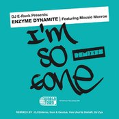 DJ E-Rock Presents: I'm So Gone The Remixes