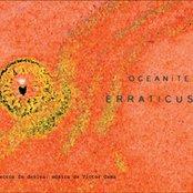 Oceanites Erraticus