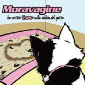 Ho scritto ti amo sulla sabbia del gatto