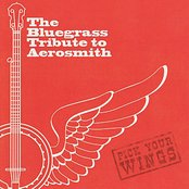 The Bluegrass Tribute to Aerosmith