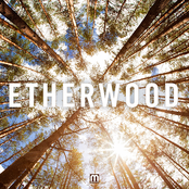 Etherwood - Falling Out of Consciousness