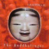 The Buddhafinger