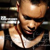 Fleshwounds