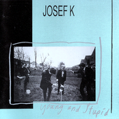 album Young and Stupid by Josef K