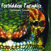 Forbidden Paradise 12: Changing Colours (disc 2)