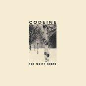 The White Birch