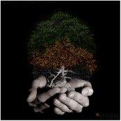 Seasons - EP