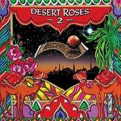 Desert Roses 2