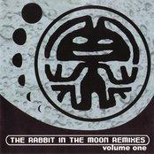 The Rabbit In The Moon Remixes, Volume 1