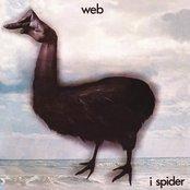 I Spider