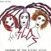 Revenge Of The Killer Slits