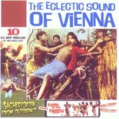 The Eclectic Sound of Vienna, Volume 1