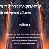 Flamecult Records Presents: The Underground Alliance Vol 1