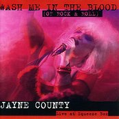 Wash Me In The Blood (Of Rock & Roll)