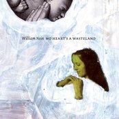 No Heart's a Wasteland