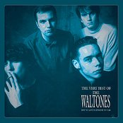 You've Gotta Hand It To 'Em: The Very Best Of The Waltones