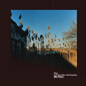 album Ma Fleur by The Cinematic Orchestra