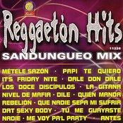 Reggaeton Hits - Sandungueo Mix