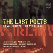 Beats, Rhyme + Revolution: The Best of the Last Poets 1970 - 1985