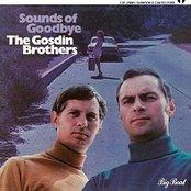 Sounds of Goodbye