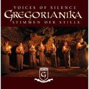 Stimmen der Stille