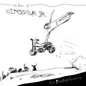 Ear-Bleeding Country: Best Of Dinosaur Jr