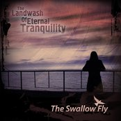 The Swallow Fly