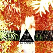 Free the Snares