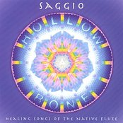Hollow Bone: Healing Songs of the Native Flute