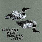 Echoer's Intent