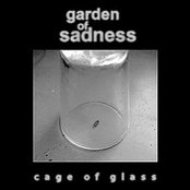 Cage of Glass