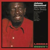 Wild Horses/Rock Steady (CTI Records 40th Anniversary Edition - Original recording remastered)