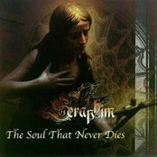 The Soul That Never Dies