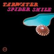 spider smile (official morr music upload)