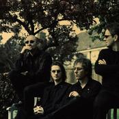 Porcupine Tree setlists