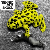 Teknic Old Skool
