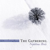 Nighttime Birds (re-issue + Bonus Tracks)