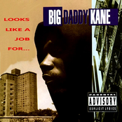 album looks like a job for... by Big Daddy Kane