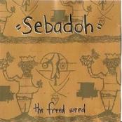 album Freed Weed by Sebadoh