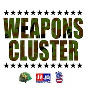 Weapons Cluster Bundle