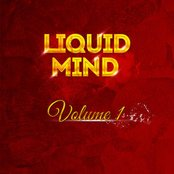 Liquid Mind Vol 1