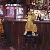 Late Night Tales: Turin Brakes