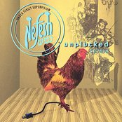 Nefesh Unplucked