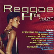 Reggae Hits Vol. 23