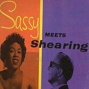 Sassy Meets Shearing